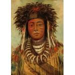 Puzzle  Grafika-02228 George Catlin: Boy Chief - Ojibbeway, 1843
