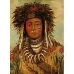 Puzzle  Grafika-02229 George Catlin: Boy Chief - Ojibbeway, 1843