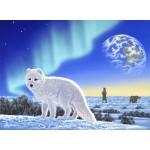 Puzzle  Grafika-02573 Schim Schimmel - Artic Fox