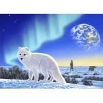 Puzzle  Grafika-02575 Schim Schimmel - Artic Fox