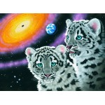 Puzzle  Grafika-02592 Schim Schimmel - Miracle of the Universe