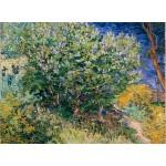Puzzle  Grafika-02789 Vincent Van Gogh - Lilacs, 1889
