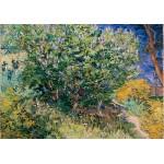 Puzzle  Grafika-02791 Vincent Van Gogh - Lilacs, 1889