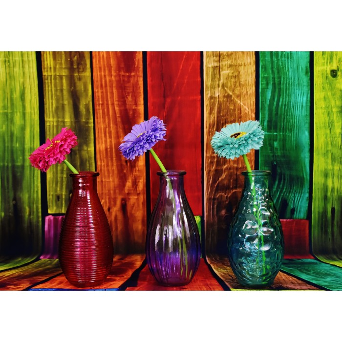 Flowered and Colorful Vases