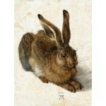 Puzzle   Albrecht Dürer - The Rabbit, 1502