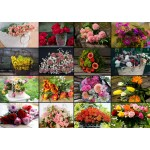 Puzzle   Collage - Flowers