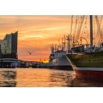 Puzzle   Deutschland Edition - Hamburger Hafen mit Elbphilharmonie
