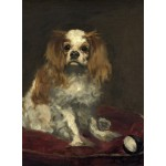 Puzzle   Edouard Manet: A King Charles Spaniel, 1866