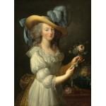 Puzzle   Elisabeth Vigée-Lebrun: Marie-Antoinette, 1783