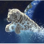 Puzzle   Schim Schimmel - Leap of Creation