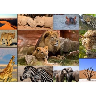 Puzzle Grafika-T-00131 Collage - Wildlife