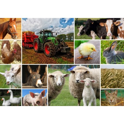 Puzzle Grafika-T-00140 Collage - Farmyard Animals