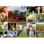 Puzzle  Grafika-T-00142 Collage - Farmyard Animals