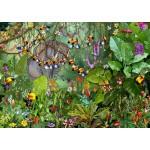 Puzzle  Grafika-T-00551 François Ruyer - Jungle