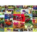 Puzzle  Grafika-T-00909 Collage - Bikes