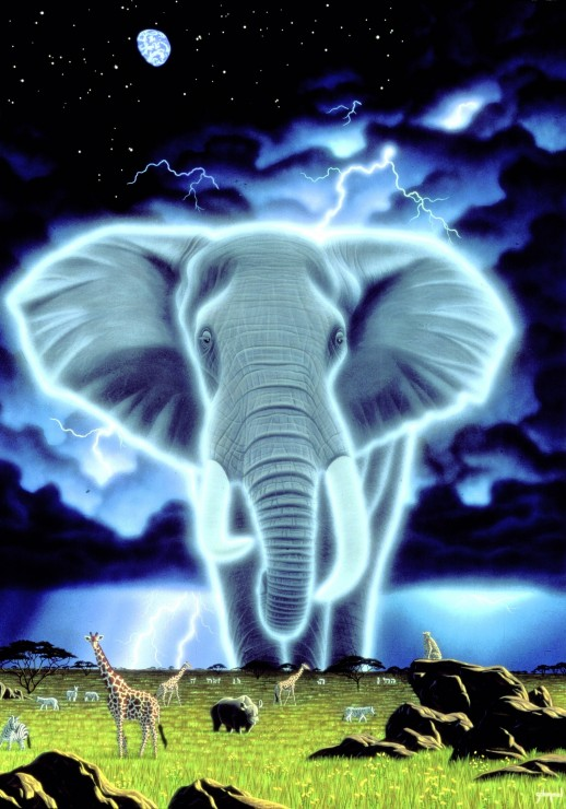 Pildiotsingu magic elephant tulemus