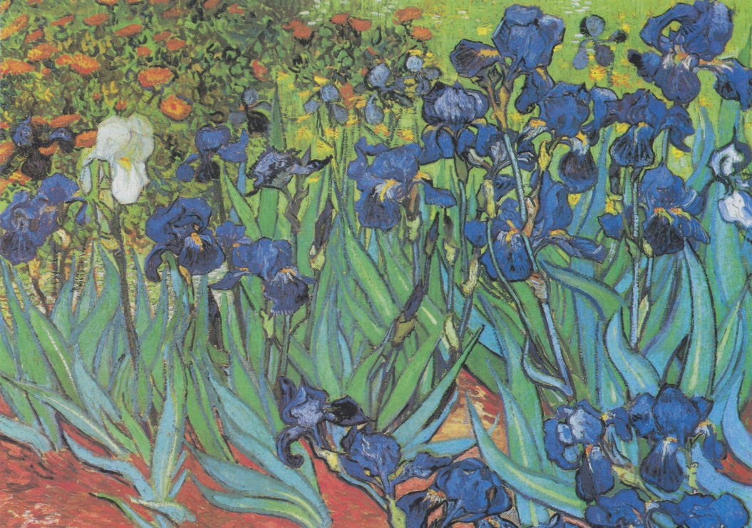Puzzle Vincent Van Gogh 1889 Grafika 00074 1000 Pieces