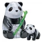 3D Crystal Puzzle - Pandas