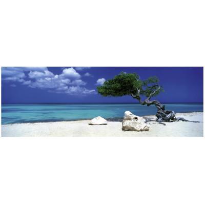 Heye-29399 Jigsaw Puzzle - 1000 Pieces - Panoramic - Alexander von Humboldt : Divi Divi tree