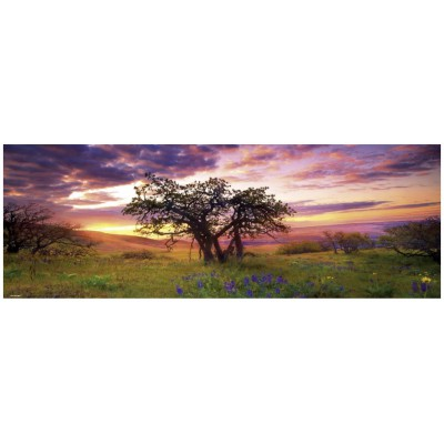 Heye-29472 Jigsaw Puzzle - 2000 Pieces - Panoramic - Alexander von Humboldt : The Oak Tree