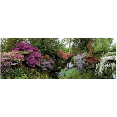 Heye-29473 Jigsaw Puzzle - 6000 Pieces - Panoramic - Alexander von Humboldt : Bodnant Garden