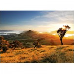Puzzle  Heye-29596 New Zealand, Todd Sisson: The Otago Peninsula