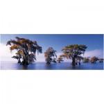 Puzzle  Heye-29607 Popp-Hackner: hairless Cypress