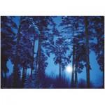 Puzzle  Heye-29625 Binge Eliasson: Full Moon