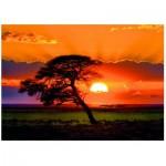 Puzzle  Heye-29689 Norbert Becke : Sunny Tree