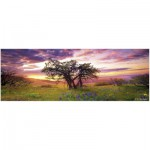 Puzzle  Heye-70170-29532 Marc Adamus: The Oak