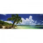 Puzzle   Paul Marcellini - Paradise Palms