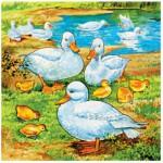 Puzzle  James-Hamilton-525-05 Ducks