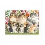 Puzzle  Jumbo-18325 Cat Family