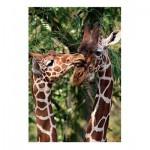 Puzzle  Jumbo-18340 Giraffes