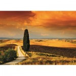 Puzzle  Jumbo-18362 Sunset in Tuscany