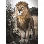 Puzzle  Jumbo-18523 Proud Lion