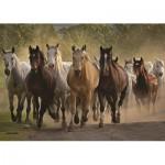 Puzzle  Jumbo-18541 Horses