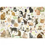 Puzzle  Jumbo-18595 Cats Poster