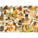 Puzzle  Jumbo-18596 Dogs Poster