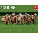 Puzzle  Jumbo-18827 Haflinger Horses