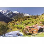 Puzzle   Berner Oberland, Switzerland