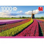Puzzle   Field of Tulips