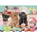 Puzzle   Studio Pets - Cupcakes
