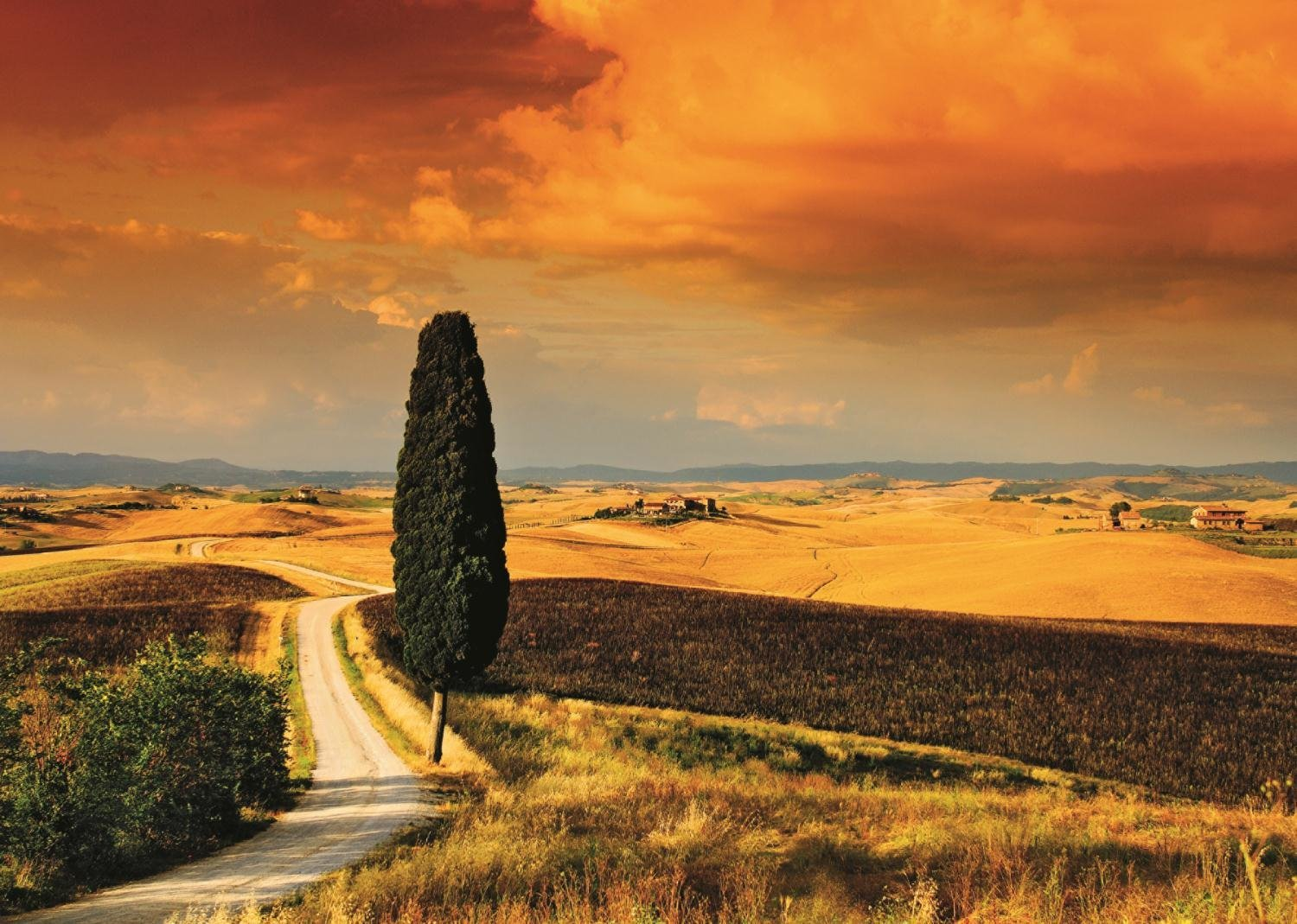 Puzzle Sunset in Tuscany Jumbo-18362 1000 pieces Jigsaw ...