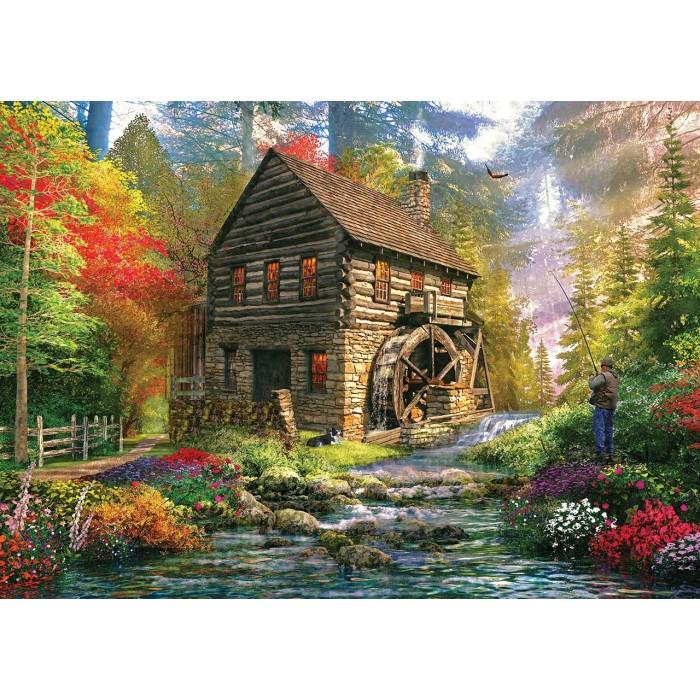 Dominic Davison: Mill Cottage