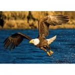 Puzzle   Eagle at Hunting
