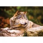 Puzzle   Lonewolf