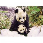 Puzzle   Panda Mother