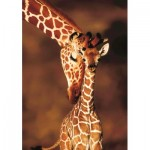 Puzzle   Stunning Giraffes