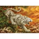 Puzzle   White Tiger